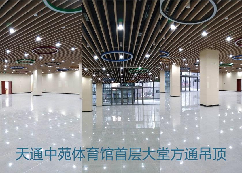 天通中苑体育馆铝方通吊顶